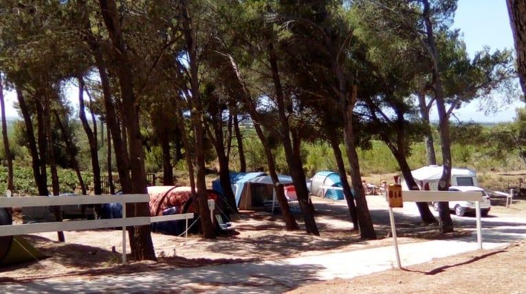 tentes du camping le bois de pins - Camping - Salses le chateau 66